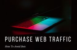 Purchase Web Traffic - How To Avoid Bots