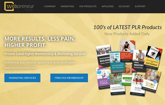 Webpreneur Media Review