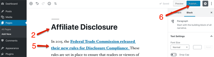 Affiliate Disclosure Publish