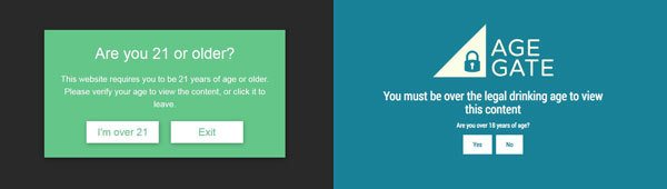 WordPress Responsive Age Restriction and Age Gate