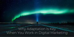 Why Adaptation Is Key When You Work in Digital Marketing