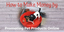 How to Make Money by Promoting Pet Products Online
