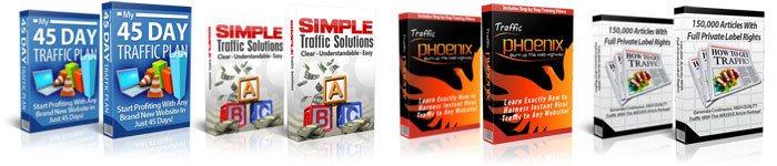 Website Traffic Niche