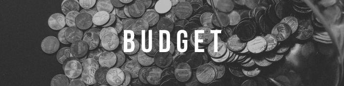 Assess Budget