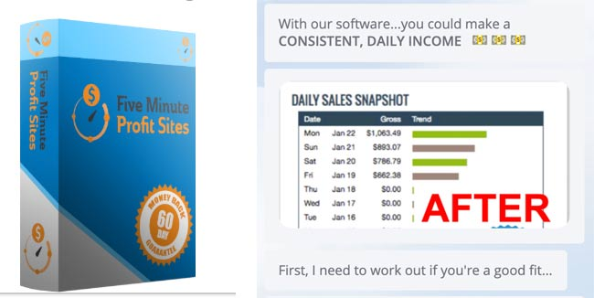 Can you make money with Five Minutes Profit Sites?